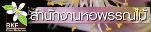 http://www.dnp.go.th/botany/Herbarium/herbariumThai_publications.html#top