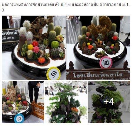 https://www.facebook.com/banyapat.suammara/posts/10206716038778145
