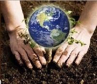 http://www.ldd.go.th/world_soil_day/index.html
